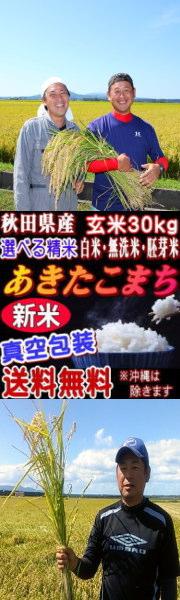 新米 真空 秋田県産あきたこまち玄米30kg