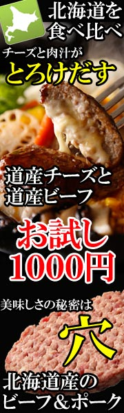 お試し北海道産ハンバーグ2種類1000円ポッキリ