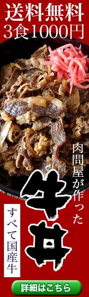 送料無料千円。国産牛肉と国産玉ねぎで作った牛丼の具