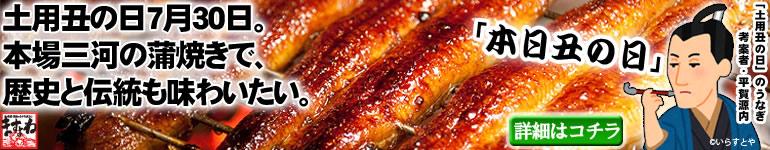 土用丑の日、本場三河の蒲焼きで伝統を味わう