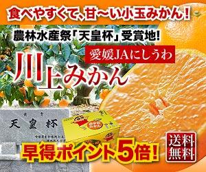 川上みかん5kg⇒2,980円 ポイント5倍 送料無料