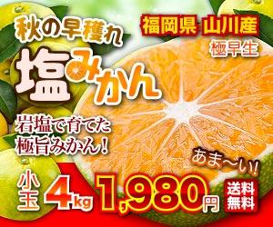 山川塩みかん4kg⇒1,980円 送料無料