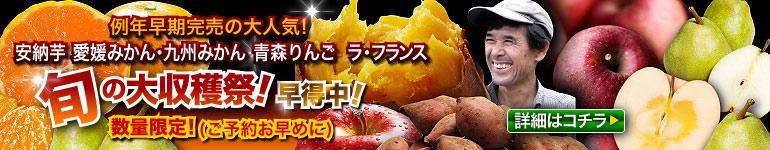 旬の収穫祭 お歳暮に最適!今しか味わえない旬の味覚