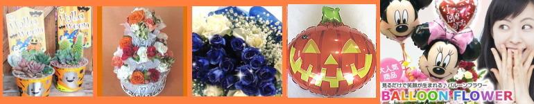 10月お勧めの花(ブルーマート)