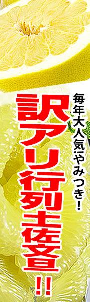 高知県特産の大玉の土佐文旦を精一杯価格でご提供!
