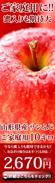 ご家庭用に!サンふじリンゴ 訳あり 10kg