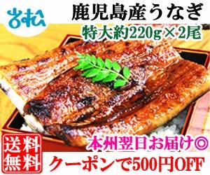 うなぎ2尾 クーポンで500円off