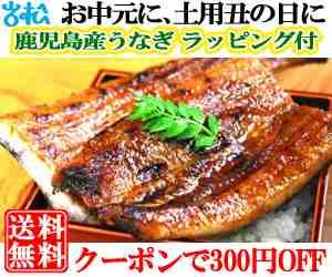 うなぎ1尾+刻み ラッピング クーポンで300円off