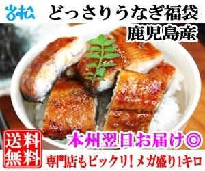 どっさりうなぎ福袋1kg カット鰻16〜22枚