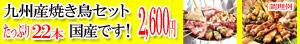 九州産焼き鳥セットたっぷり22本2,600円国産