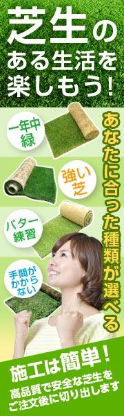秋は芝の施工に適した季節。常緑芝もあります。
