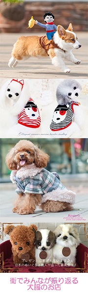 思わず笑顔になる♪超かわいい犬のお洋服のお店♪