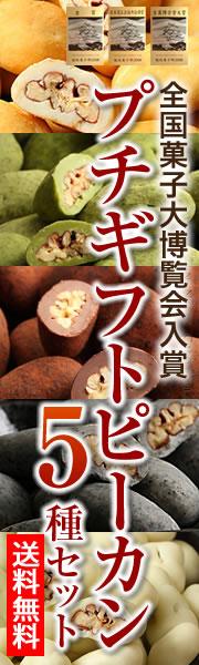 送料無料 ピーカンナッツチョコ5種